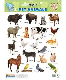 2 in1 Pet Animals & Wild Animals - English