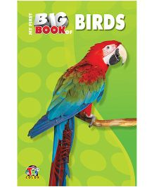 My First Big Book Birds - English