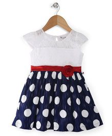 Rosy Bow Cap Sleeves Polka Dot Frock Floral Applique - Blue White