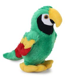 Starwalk Plush Parrot Soft Toy Green - 8 Inches
