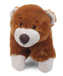 Starwalk Plush Teddy Bear Pillow Brown - 20 Inches