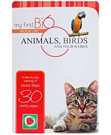 My First Big Book of Animals, Birds And Their Babies