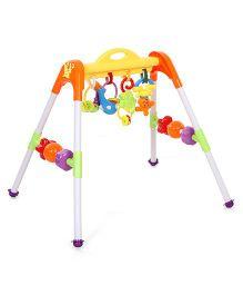 Animal Play Gym - Multicolour