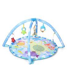 Winfun Polar Fiesta Infant Play Gym - Blue & White