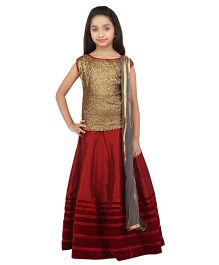 K&U Sleeveless Silk Velvet Lehenga Choli And Dupatta Set - Maroon & Gold