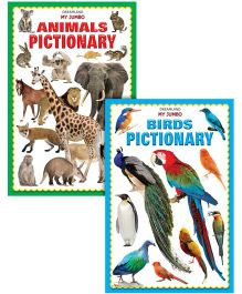 Jumbo Pictionary Pack of 2