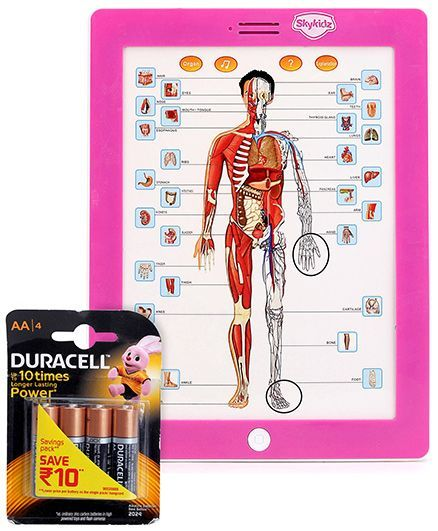 Mitashi Skykidz Anatomy Learning Pad - Pink and  Duracell AA Batteries - Pack Of 4