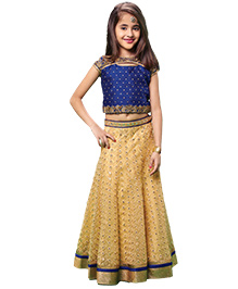 Peek-A-Boo Aari Pita Work Lehenga Choli - Blue & Golden