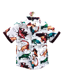 Teddy Guppies Half Sleeves Shirt Dinosaur Print - White