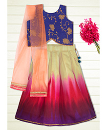 Shilpi Datta Som Lengha Skirt With Embroidered Crop Top - Peacock Blue Orange & Pink