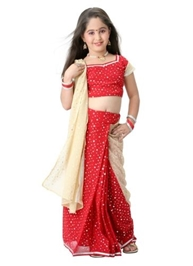 Bhartiya Paridhan - Designer Apsara Saree Set