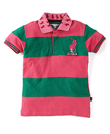New York Polo Academy Half Sleeves Polo Neck T-Shirt - Pink & Green