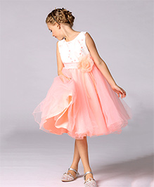 Pre Order - Awabox Lace & Shimmery Dress With Flower Applique - Pink