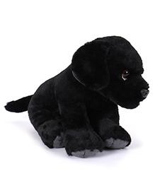 Wild Republic Pet Shop Labrador Pup Soft Toy Black - 24 Cm