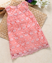 Shu Sam & Smith Mesh A-Line Dress - Peach