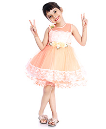 Little Pockets Store See Through Fit & Flare Tulle Dress - Peach