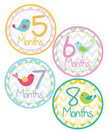 Lollipop Labels Bird Design Monthly Sticker With Chevron Pattern - 12 Stickers