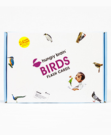 Hungry Brain Birds Flash Cards - Multi Color