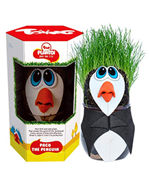 Toiing PlanToi Paco The Penguin - Black White & Green