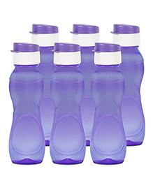 G-Pet Sipper Water Bottles Pack Of 6 Purple - 1000 Ml