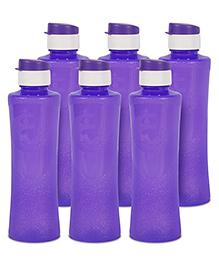 G-Pet Sipper Water Bottles Pack Of 6 Daffodil Purple - 1000 Ml
