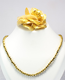 Pihoo Necklace & Hair Clip - Golden