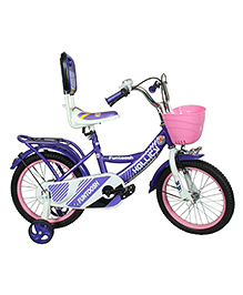 Hollicy Fury 16 Inch Kids Bicycle With Trainer Wheels -  Purple
