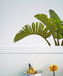 Asian Paints Wall Ons Nature Palm Paradise Removable Wall Sticker Green - XL