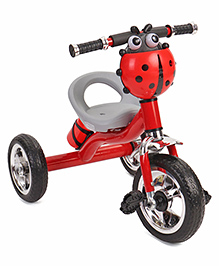 Tricycle With Water Bottle Carrier Ladybug Design - Red Grey