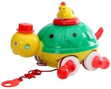 Luvely - Push N Go Tortoise