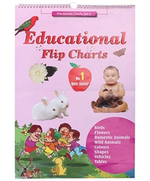 Apple Books - Educational Flip Charts Set 2 Book