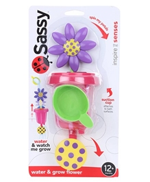 Sassy - Water and Grow Flower