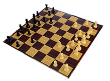 Play N Pets Chess - The Winning Battle Between Black And White
