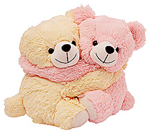Dimpy Stuff Lovable Pink And Cream Bear Couple Soft Toy