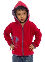 Nino Bambino Maroon Full Sleeves Hooded Sweatshirt
