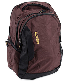 American Tourister Buzz 03 Back Pack - Brown