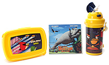 Angry Birds Lunch Box Combo Set Design 3