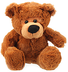 Play N Pets Teddy Bear Brown - 27 cm