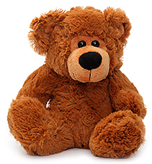 Play N Pets Teddy Bear Soft Toy Dark Brown - 22 cm