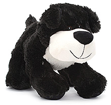 Play N Pets Doggy Soft Toy Black - 26 cm