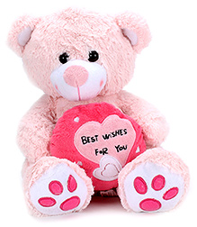 Play N Pets Teddy Bear Soft Toy Light Pink - 30 cm