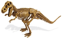 Geoworld Dino Excavation Kit- T-rex Skeleton