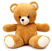 IR Soft Brown Teddy Bear - 35 cm