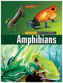 Macaw Animal Encyclopedia Amphibians - English