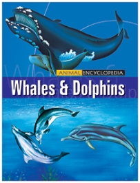 Macaw Animal Encyclopedia Whales And Dolphins - English