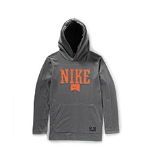 Nike Pullover Performance Logo Hooded Sweatshirt - Grey