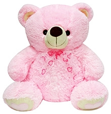 Soft Buddies Teddy Bear Soft Toy Pink - Big - 18 x 21 x 13 Inches