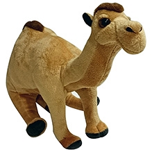 Soft Buddies Camel Soft Toy - Light Brown - 7 X 9 X 13 Inches