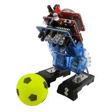 Adraxx Mini Biped Interactive Robot KIT