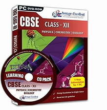 Average2Excellent DVD Class XII Combo Pack - CBSE Board